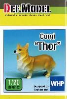 コーギー犬 トール