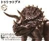 きょうりゅう編 トリケラトプス