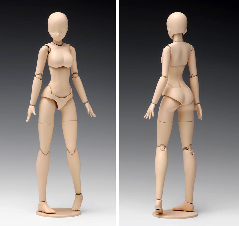 ムーバブルボディ 女性型 スタンダードプラモデル(ウェーブオプションシステム (プラユニット)No.SR-021)商品画像_2
