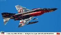 F-4EJ改 スーパーファントム 302SQ F-4 ファイナルイヤー 2019 (ブラックファントム)