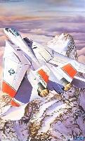 フジミ1/48 AIR CRAFT(シリーズS)F-14D スーパー トムキャット