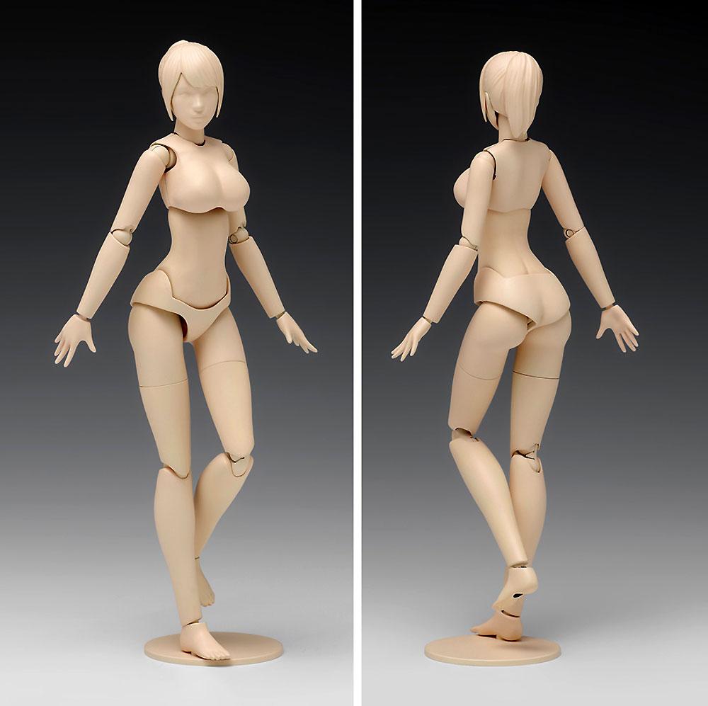 ムーバブルボディ 女性型 Cバージョンプラモデル(ウェーブオプションシステム (プラユニット)No.SR-024)商品画像_2