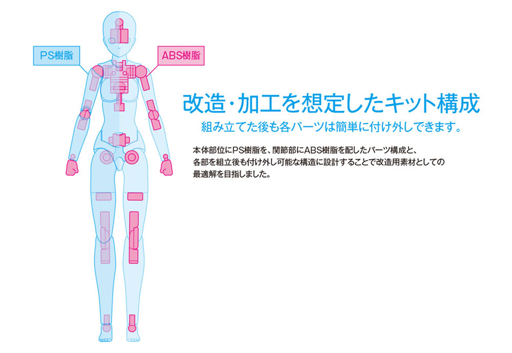 ムーバブルボディ 女性型 Cバージョン (ウェーブ オプションシステム SR-024) の商品画像