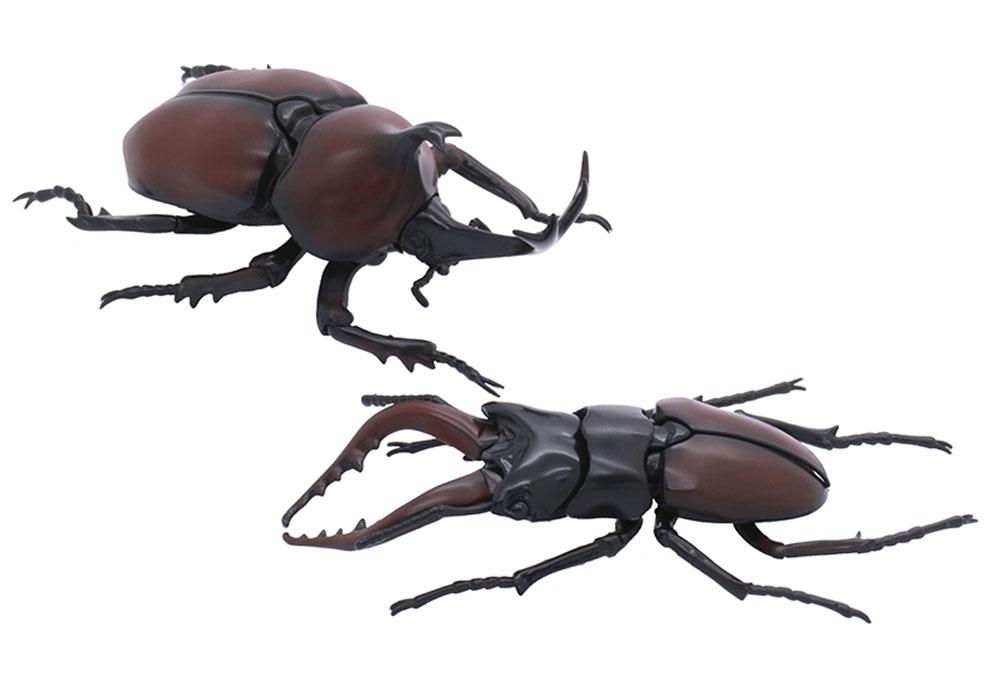 いきもの編 クワガタムシ vs カブトムシ 対決セットプラモデル(フジミ自由研究No.025)商品画像_2