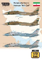 トムキャット最後の稼働機 イラン空軍 アリキャット
