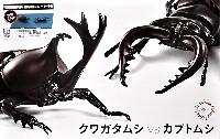いきもの編 クワガタムシ vs カブトムシ 対決セット