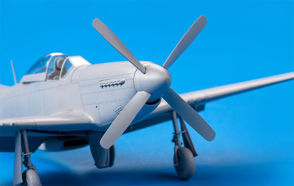 チャタヌーガ・チュー・チュー P-51D-5プラモデル(エデュアルド1/48 リミテッドエディションNo.11134)商品画像_3