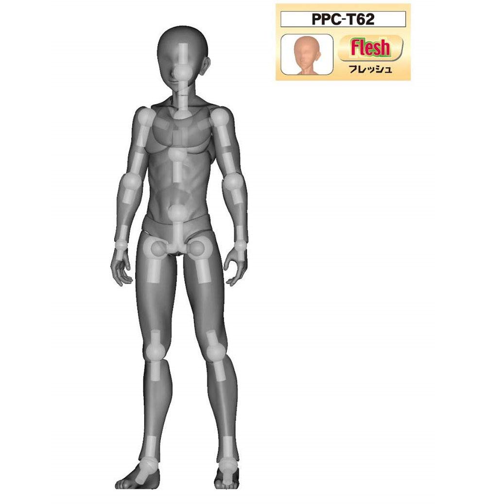 素材くん Mサイズ フレッシュフィギュア(ホビーベース間接技EXNo.PPC-T062)商品画像_1