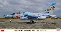 川崎 T-4 エアーパーク 20周年記念