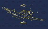 エデュアルド1/48 ロイヤルクラスP-51D マスタング デュアルコンボ