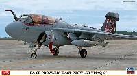 EA-6B プラウラー ラストプラウラー VMAQ-2