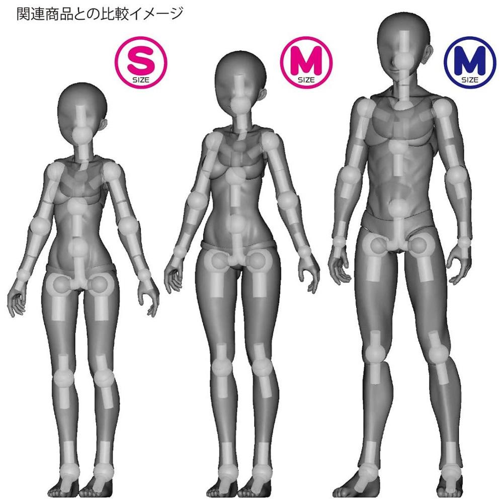 素材ちゃん Sサイズ ライトフレッシュフィギュア(ホビーベース間接技EXNo.PPC-T067)商品画像_4