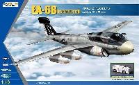 EA-6B プラウラー VMAQ-2 プレイボーイズ