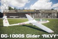 DG-1000S グライダー アクビー