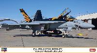 F/A-18E スーパーホーネット VFA-151 ビジランティーズ CAG