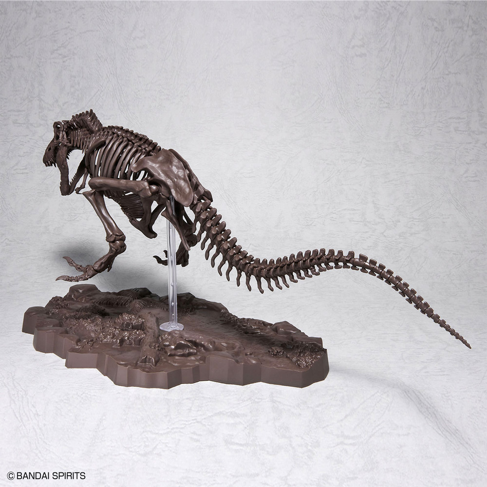 ティラノサウルスプラモデル(バンダイImaginary skeletonNo.5061800)商品画像_2