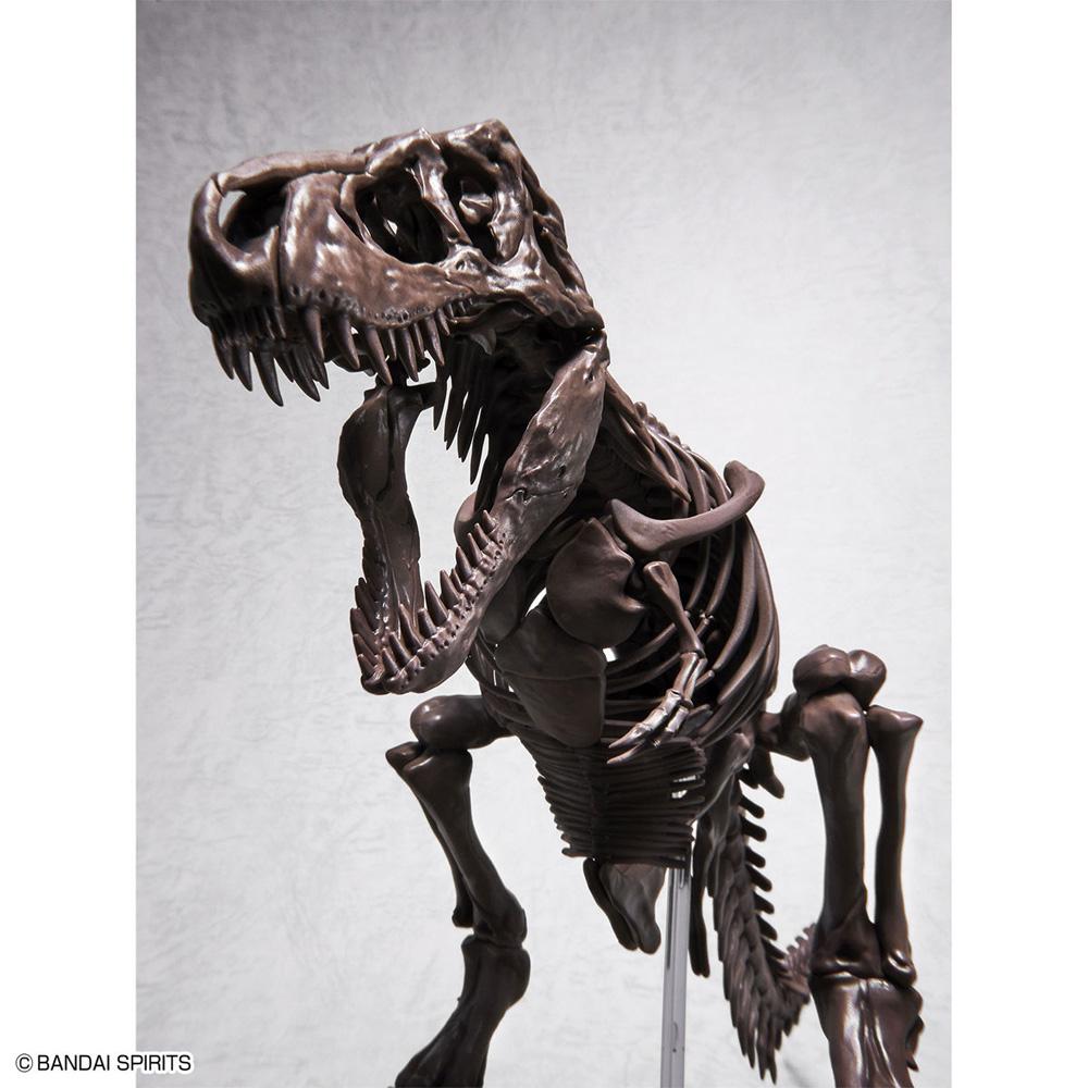 ティラノサウルスプラモデル(バンダイImaginary skeletonNo.5061800)商品画像_3