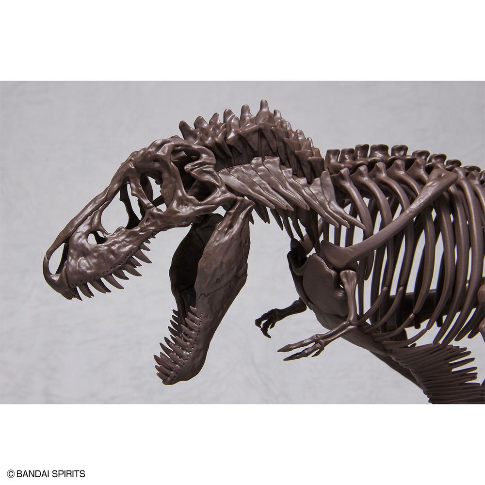 ティラノサウルスプラモデル(バンダイImaginary skeletonNo.5061800)商品画像_4