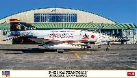F-4EJ改 スーパーファントム 301SQ 20周年記念