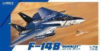 F-14B ボムキャット