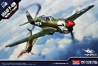 USAAF P-40N ウォーホーク バトル・オブ・インパール