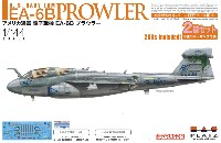 アメリカ海軍 電子戦機 EA-6B プラウラー