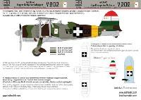 フィアット CR.42 王立ハンガリー空軍 V.202 デカール