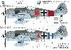 フォッケウルフ Fw190A-8/R2 5./JG300 デカール